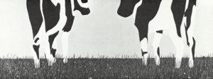 1967 - Horizon met twee koeien - Wim Gijzen - schilderij 100 x 210 cm Collectie Stedelijk Museum Schiedam